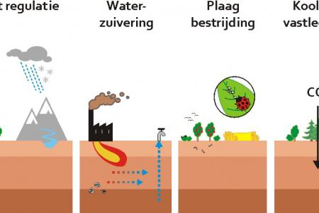 water regulatie